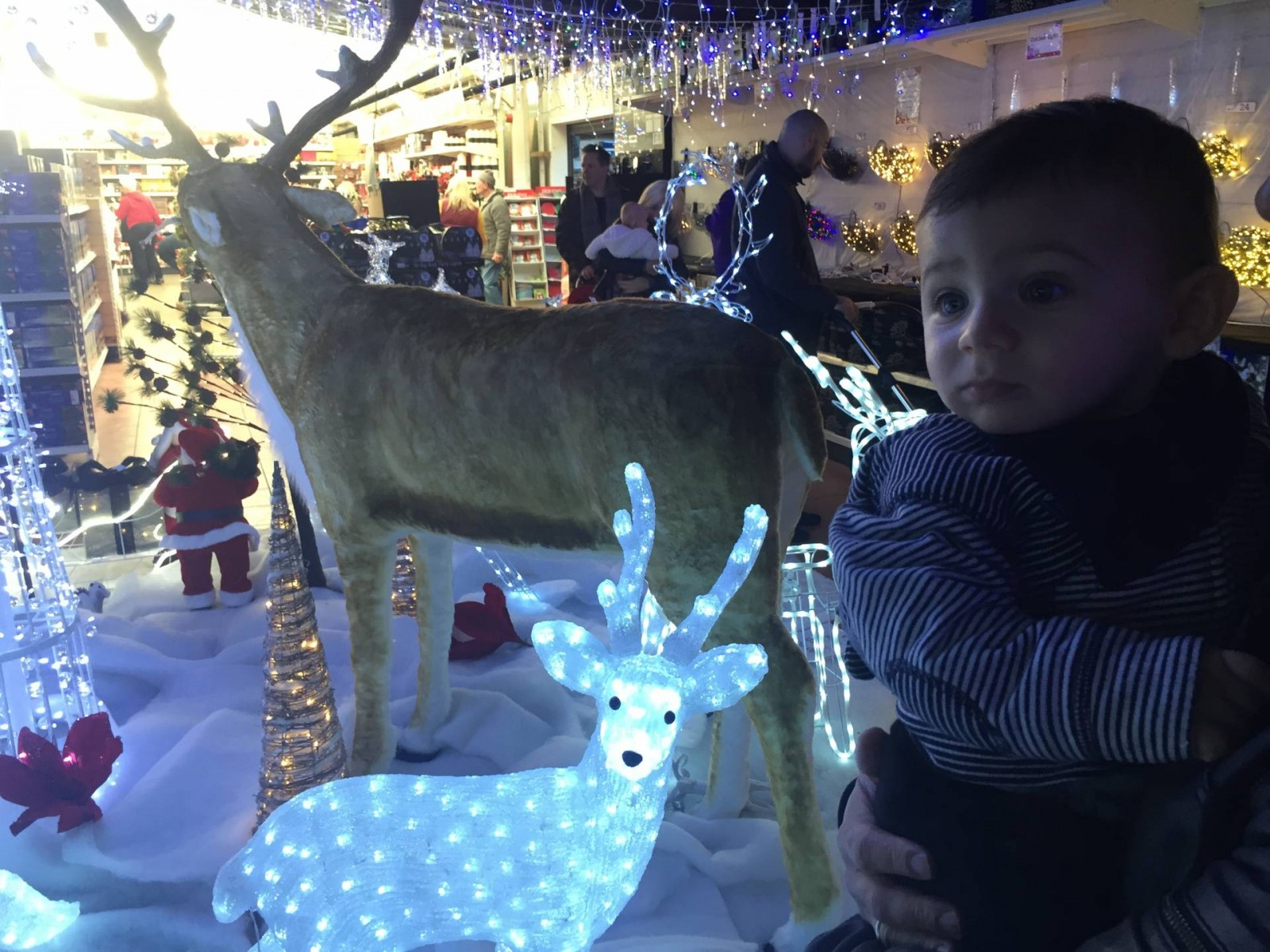 Chessington Garden Centre Christmas