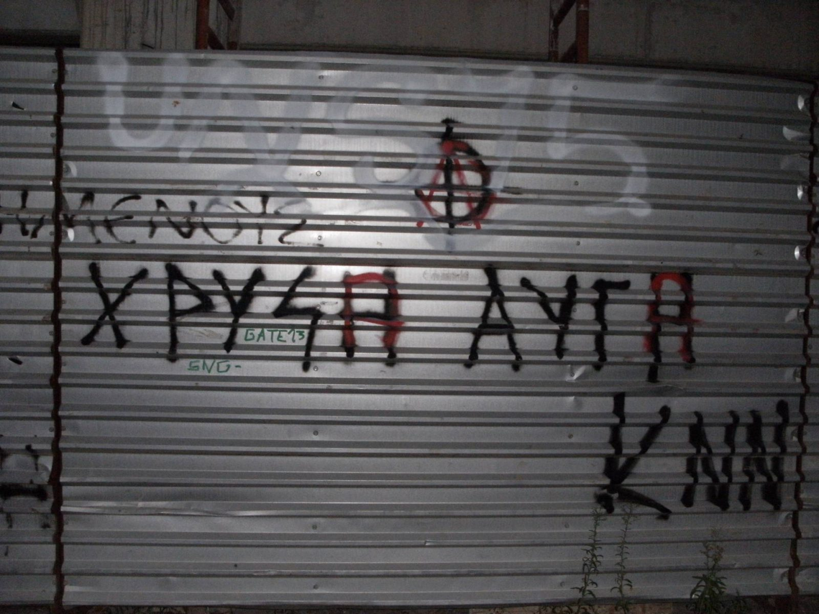 Golden Dawn, the far-right party with neo-Nazi overtones